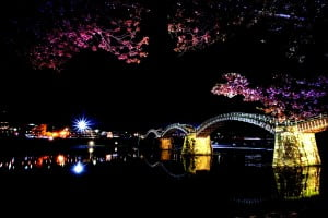 Kintai Bridge night view with Cherry Blossoms