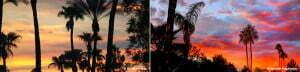 Glendale AZ Sunsets